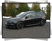Volkswagen Golf 6, German, Style
