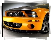 Ford Mustang, Grill, Ksenony