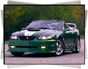 Ford Mustang, Kabriolet, Tuning