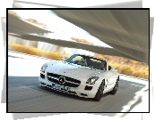 Mercedes-Benz SLS Roadster AMG