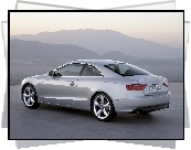 Audi A5, Coupe, Wydech
