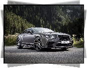 Bentley Continental Supersports, 2017