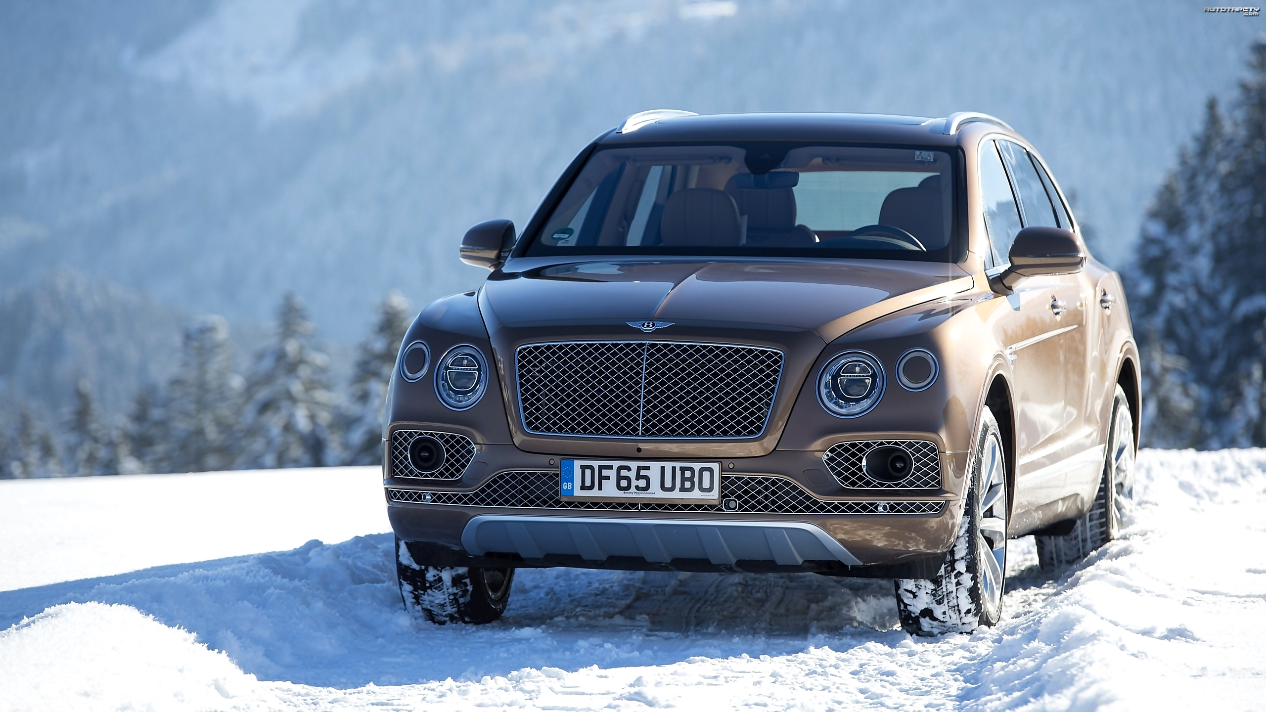 Bentley Bentayga, Śnieg