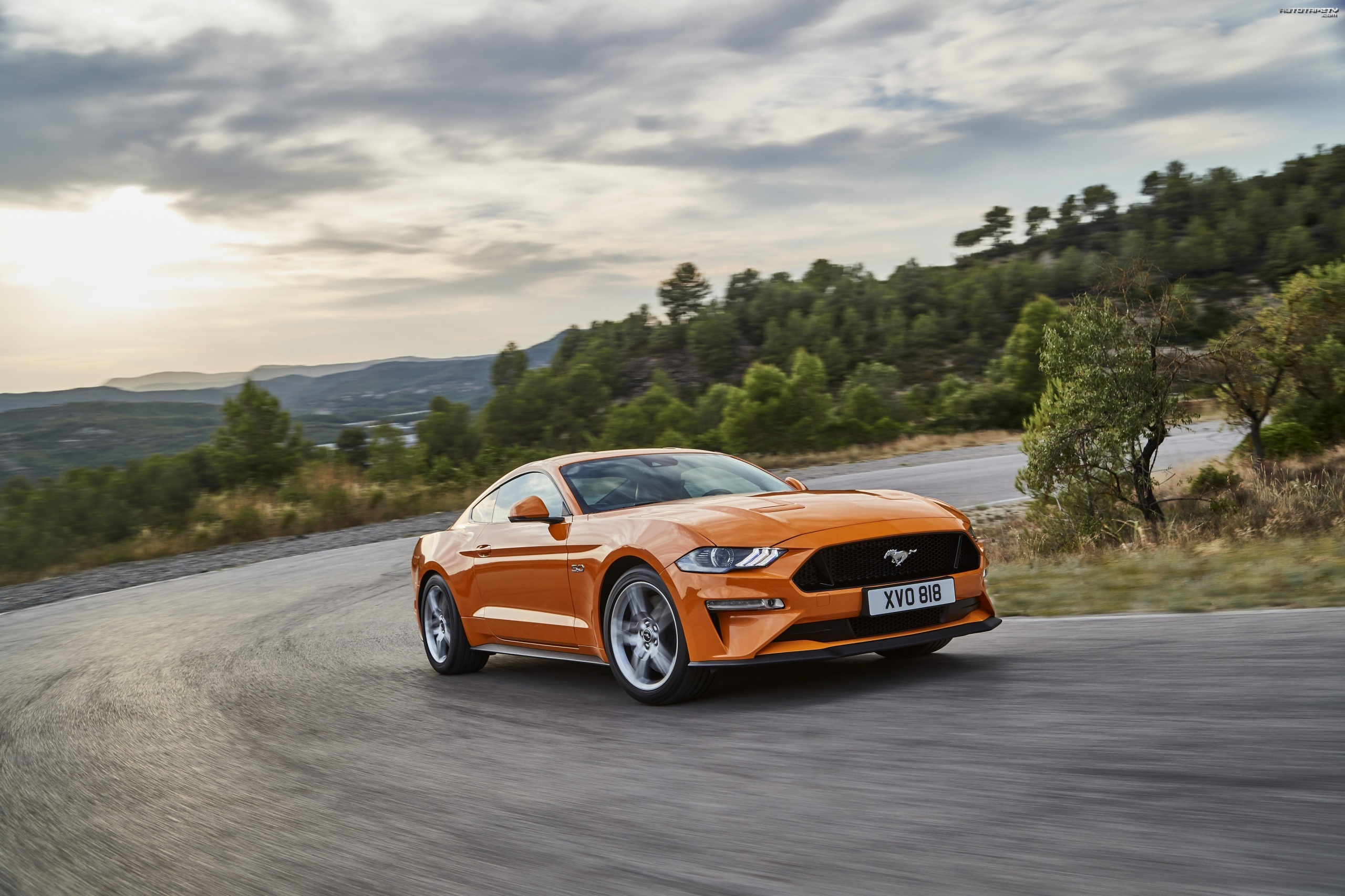 Ford Mustang GT, Droga