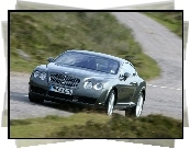 Bentley Continental, Droga