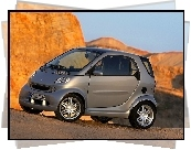 Szary, Smart Fortwo