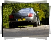 Bentley Continental GT, Profil, Opon