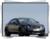 Bentley Continental GTC, Reflektory