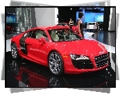 Dealer, Audi R8, Hostessa