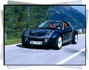 Czarny Metalik, Smart Roadster