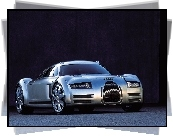 Audi Rosemeyer, Concept, Car