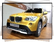 BMW X1, Salon, Concept, Car