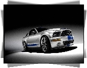 Ford Mustang, GT500, Shelby