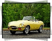 Jaguar e-type 1968