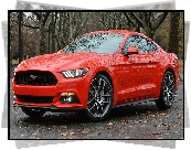 Czerwony, Ford Mustang, Coupe