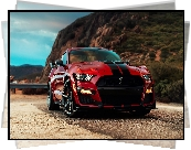 Ford Mustang Shelby GT500, Przód