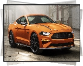 Ford Mustang, High Performance Package
