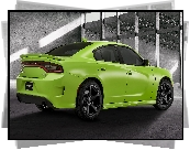 Dodge Charger SRT, Bok, Tył